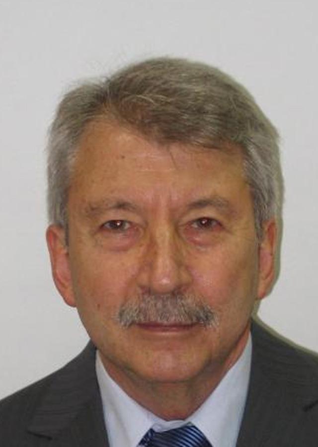 Rodolfo Mattarollo